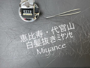 不動前、白髪抜きミヤンセ代官山店50分コース279本